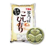 千葉県多古産 白米 こしひかり 10kg [5kg×2袋] 徳川献上米 平成28年産