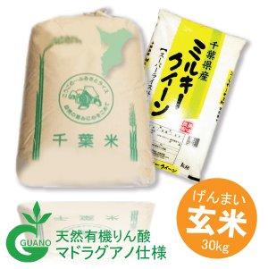 画像2: 千葉県産 玄米 ミルキークイーン 30kg マドラグアノ仕様 令和2年産
