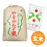 山形県産 玄米 つや姫 30kg 特別栽培米 平成30年産 食味鑑定品 特A米 向後米穀