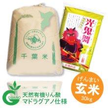 詳細写真1: 千葉県産 玄米 光鬼舞(ひかりおにまい) こしひかり 30kg 平成30年産 向後米穀