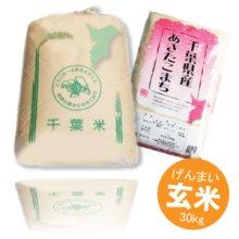詳細写真1: 千葉県産 玄米 あきたこまち 30kg 平成30年産 向後米穀