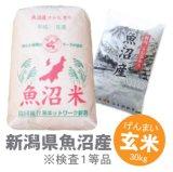 新潟県 魚沼産 玄米 こしひかり 30kg 平成29年産 特A米