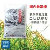 新潟県 魚沼産 白米 こしひかり 5kg×1袋 令和2年産 特A米
