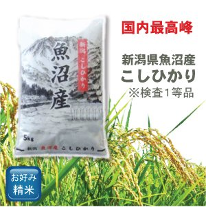 画像2: 新潟県 魚沼産 無洗米 こしひかり 5kg×1袋 令和2年産 特A米