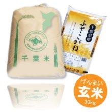 詳細写真1: 千葉県産 玄米 ふさこがね 30kg 平成30年産 向後米穀