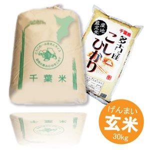 画像1: 千葉県多古産 玄米 こしひかり 30kg 徳川献上米 平成30年産