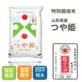 山形県産 白米 つや姫 5kg×1袋 平成30年産 食味鑑定品