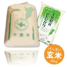 詳細写真1: 千葉県産 玄米 こしひかり 30kg 令和元年産