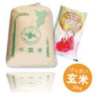 詳細写真2: 千葉県産 玄米 ふさおとめ 30kg 平成28年産 県推奨品種 向後米穀