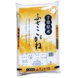 千葉県産 無洗米 ふさこがね 10kg [5kg×2袋] 令和元年産 向後米穀