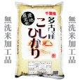 画像1: 千葉県多古産 無洗米 こしひかり 10kg〜30kg [5kg袋] 徳川献上米 平成30年産  (1)