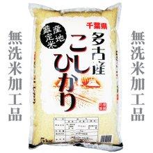 詳細写真1: 千葉県多古産 無洗米 こしひかり 10kg〜30kg [5kg袋] 徳川献上米 平成30年産