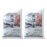 新潟県 魚沼産 白米 こしひかり 10kg [5kg×2袋] 令和元年産 特A米