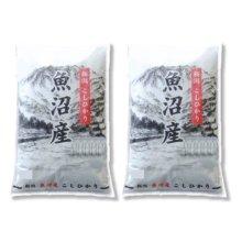 詳細写真1: 新潟県 魚沼産 無洗米 こしひかり 10kg [5kg×2袋] 令和元年産 特A米