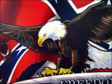 詳細写真3: ブリキ看板 FREEDOM 自由 REBEL